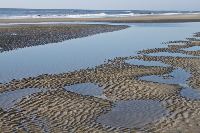 Isle Of Palms Tide Chart
