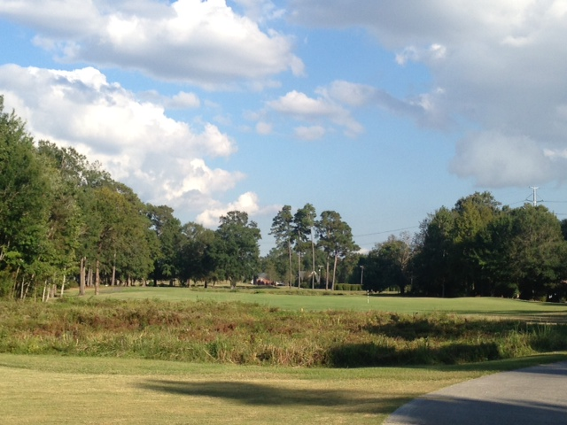 Golf course homes for sale in Charleston, SC, Mount Pleasant, James Island, West Ashley and Daniel Island